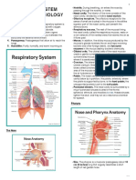 MS Respiratory System a&P