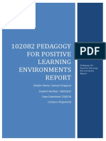 pedagogy for positive learning environment report2