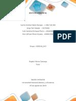 FASE FINAL Fase 4 Gestion Ambiental Colaborativo (2)