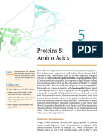5 - Proteins and Amino Acids (9!22!16) (1)