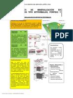 Resumen Controles de Mineralización