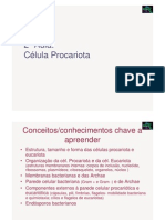 Microbiologia 2ª Aula - Celula Procariotica e Eucariotica
