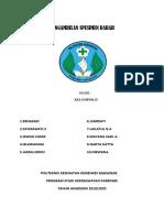 Laporan Praktikum Lab ( Pak h.abd Rahman) Klp II(1)
