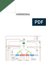 Kb Hormonal