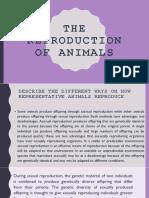 THE-REPRODUCTION-pt.finale-1.pptx