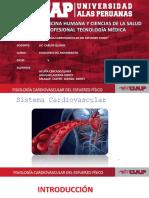 Sistema Cardiaco EXPO