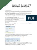 Conhecendo o Módulo de Função BTE - Adicionando Campos Em Relatórios FBLs