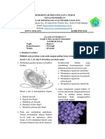 18. UH KD 3.5 Bakteri