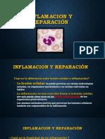 Inflamacion y Reparacion