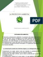 La Proteccion Ambiental