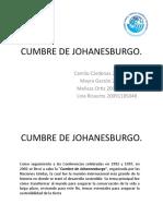 CUMBRE DE JOHANESBURGO