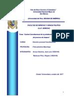Monografia Procesal Constitucional.docx