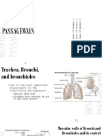 Functions of the Respiratory Passage Ways