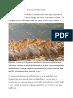 ecosistem delta dunarii
