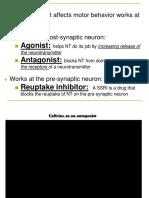 neuro lesson 5