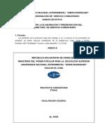 Estructura Informe de Servicio Comunitario