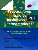 Pseudomonas e Acinetobacter