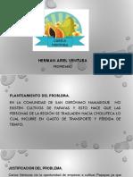 Presentacion Carica (1)