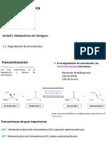 1.2. Degradación de Aminoácidoss