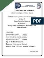 ensayo de elementos de calidad.docx