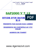 Xx Sap2000 Watermark