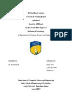 Final Report Intership (1)