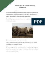 DESARROLLO-VEGETATIVO-DEL-GANADO-LANAR.docx
