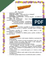 0 Au Inflorit Iar Crizanteme
