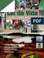 Apresentação de slide sobre a lei de crimes ambientais