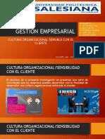 Investigación Cultura Organizacional_Atención Al Cliente