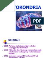 4. Mitokondria