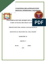 Univercidad Nacional Del Altiplano Puno