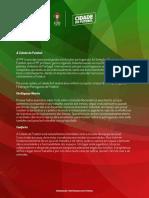 cidade futebol - sinopse2.pdf