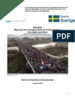 Informe Migracion Region Huye