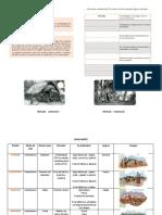 Guía de estudio de pueblos originarios