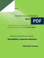 Desafios Deficienca Escuela Deficiencia Visual