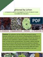 at transformation lichens