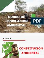 (3) Constitución Ambiental