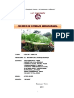 305428424 Proyecto Lechuga Hidroponica Para Correo