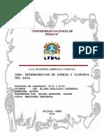 Ingenieria Ambiental y Forestal1