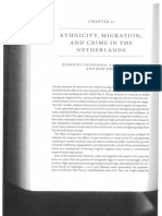 Ethnicity Migration and Crime in the Netherlands.pdf