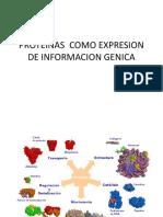 Proteinas Como Expresion de Informacion Genica