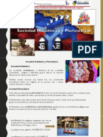 Sociedad Multietnica y Pluricultural