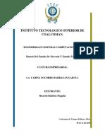 Sintesis Del Estudio de Mercado y Estudio Técnico Ricardo