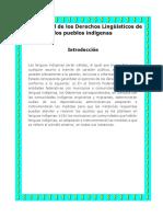 Ley General de Los Derechos Lingüísticos de Los Pueblos Indígenas-1