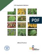 1 Produccion Organica de Cultivos Andinos