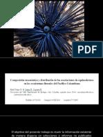 Composición Taxonómica y Distriibución de Las Asociaciones de Euinodermos en Los Litorales Del Pacifico Colombiano