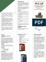 Triptico de derecho procesal constitucional.pdf