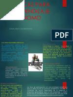 Infografia Tecnicas Para El Aprendizaje Autonomo