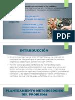 exposicion elaboracion de proyectos.pptx
